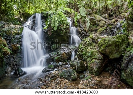 Waterfalls and vegetation inside the Bwindi Impenetrable Forest in Uganda (Africa) - stock photo