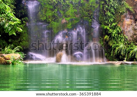 Waterfalls in the forest - stock photo