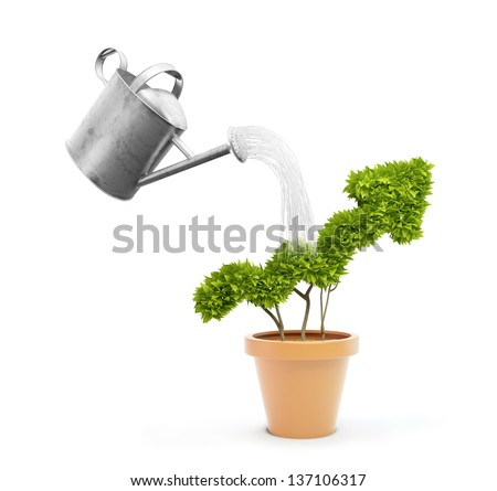 Watering a small plant shaped like a graph in a pot