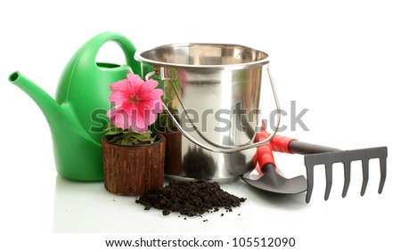 watering can, bucket, tools and plants in flowerpot isolated on white - stock photo
