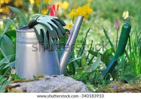 watering can, gloves ant dibble on the ground next to spring flowers  - stock photo