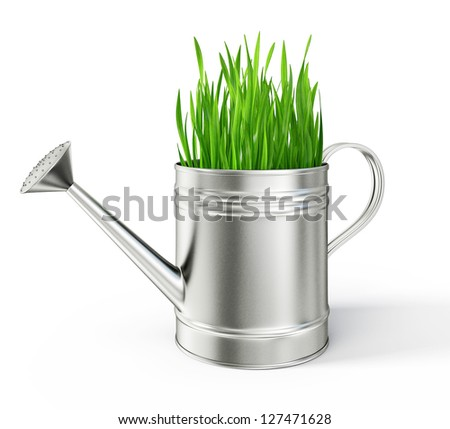 watering can isolated on a white background