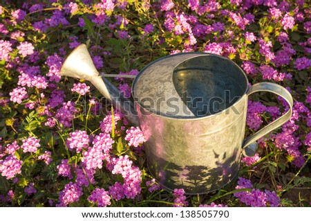 Watering can under a warm spring sunshine