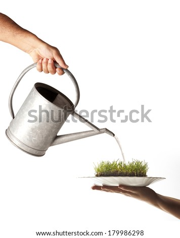 watering can washing a dish with grass
