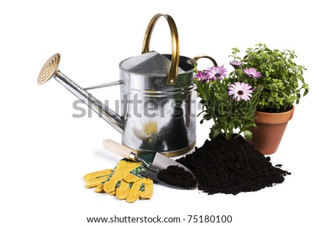 Watering can with flower and gardening tools isolated - stock photo