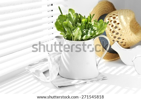 Watering can with variety of green leaves for salad on windowsill - stock photo