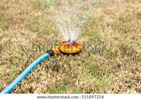 Watering dry grass lawn with Sprinkler in the garden