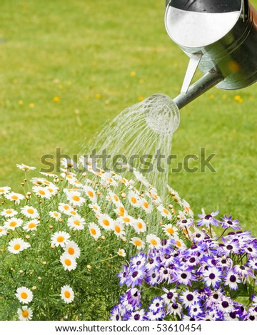 Watering flowers in summer garden with room for copy space - stock photo