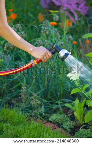 Watering flowers in the garden  - stock photo