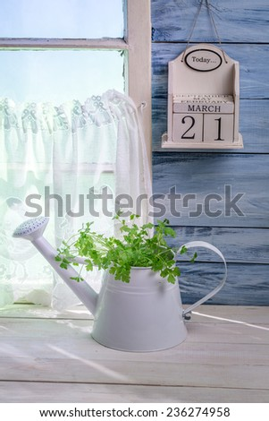 Watering standing with herbs in sunny kitchen - stock photo