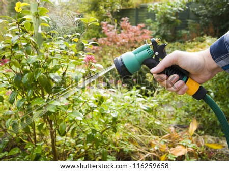 watering the garden, man using hose pipe with spray head - stock photo