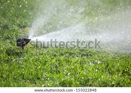 watering the grass on the lawn