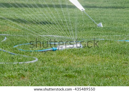 watering the lawn, a bright sunny day