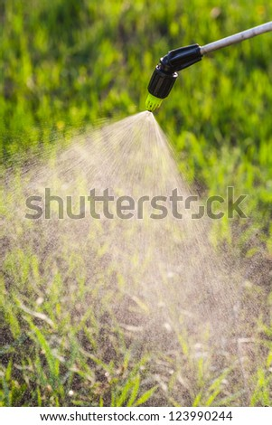 watering the lawn with a hand sprayer - stock photo