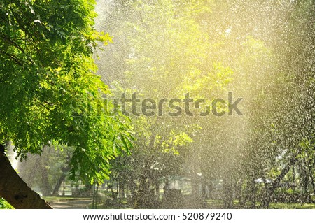 Watering tree with sprinkler look like beautiful raining with light flare.  Raining in park.