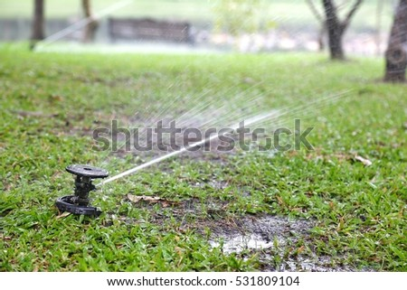 Watering with a sprinkler for the garden