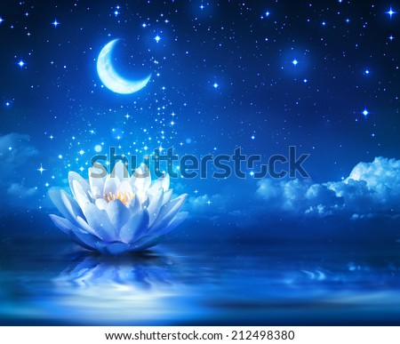 waterlily and moon in starry night - magic background  - stock photo
