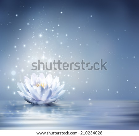 waterlily light blue on water - fairytale background  - stock photo