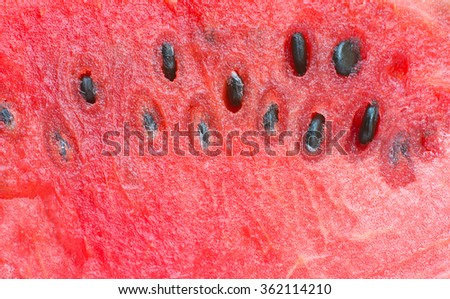 watermelon close-up,Watermelon fruit with seeds,Close-up of fresh slices of red watermelon,Close-up red watermelon - stock photo