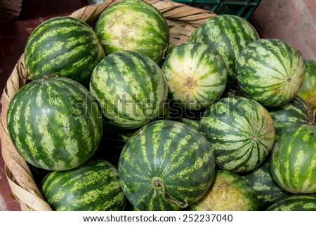 watermelon group from a marketplace in a basket - stock photo