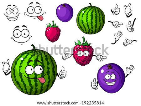 Watermelon, raspberry and plum fruits in cartoon style isolated on white. Vector version also available in gallery - stock photo
