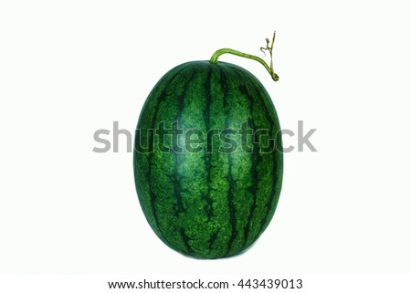 Watermelon red sweet fruit from tropicals.