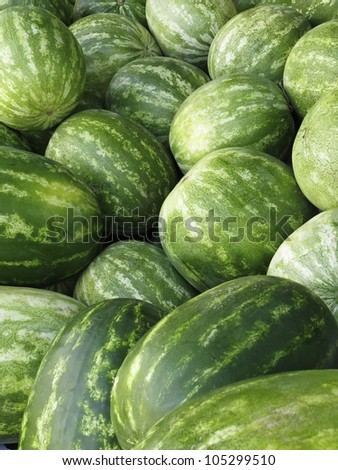 Watermelons (botanical name: Citrullus lanatus) at farmers' market in Sarasota, Florida