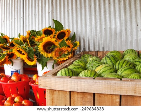 Watermelons, sunflowers, and tomatoes are merchandised for sale in various bins, buckets, and baskets at a rural farm market. - stock photo