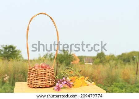 Wattled basket with a gooseberry standing on a table in a garden