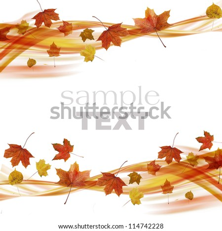 Wave from Autumn Leaves isolated on white background - stock photo