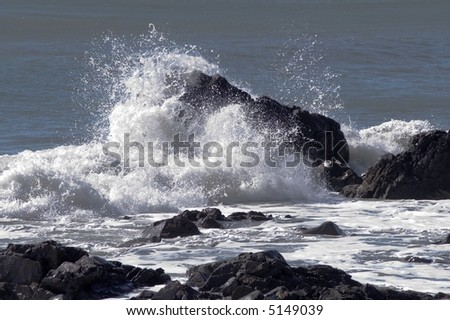 Wave Meets Rock