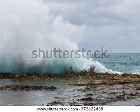 Wave splash, South Island, New Zealand - stock photo