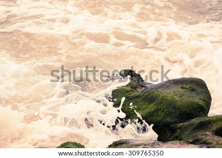 Waves breaking on the stone covered with seaweed. Tinted. - stock photo