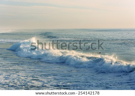 Waves in the Pacific Ocean, in Imperial Beach, California.