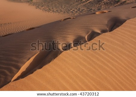 Waves of sand in sahara desert