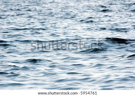Waves on the surface of northen lake