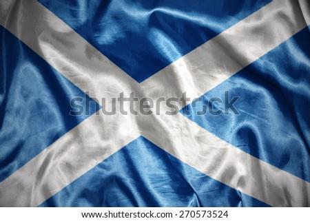 waving and shining scottish flag - stock photo