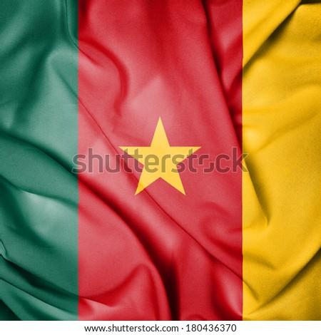 Waving Flag of Cameroon - stock photo
