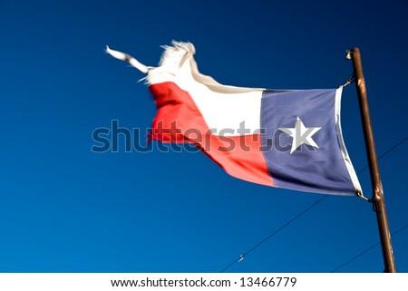 Waving Texas Flag on Spring Morning - stock photo