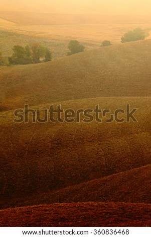 Wavy brown hillocks, sow field, agriculture landscape, nature carpet, Tuscany, Italy - stock photo