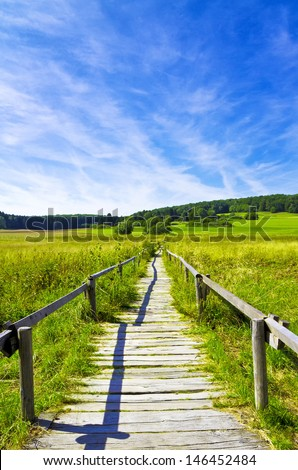 Way in to the nature - stock photo