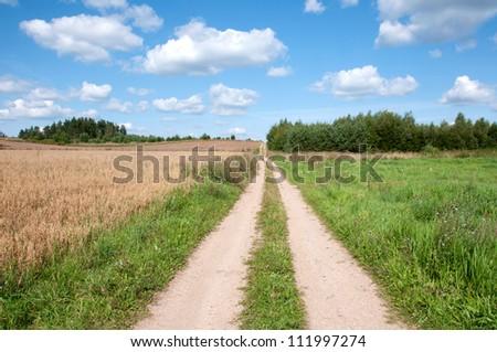 way through the field - stock photo
