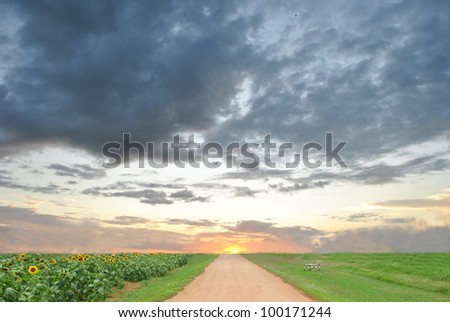 way with sun - stock photo