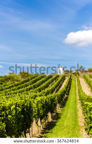 wayside near Hnanice with vineyard, Southern Moravia, Czech Republic - stock photo