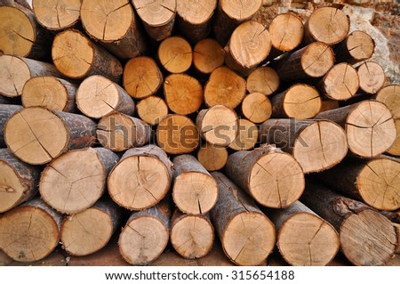 We use them for firewood as fuel to provide warmth in winter. - stock photo