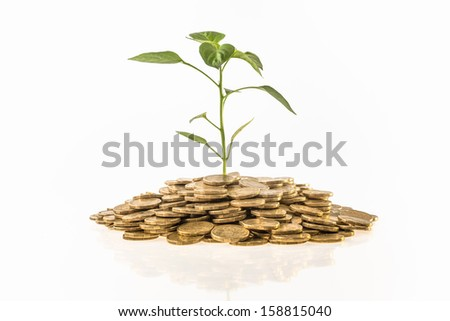 Wealth Growth - stock photo