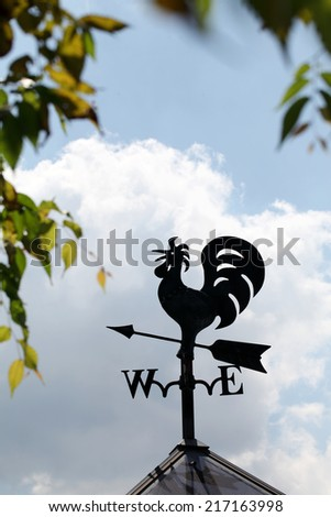 Weather vane sign on blue cloudy sky  - stock photo