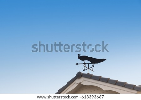 Weather vane with peacock above an arrow and the four cardinal points North East West South