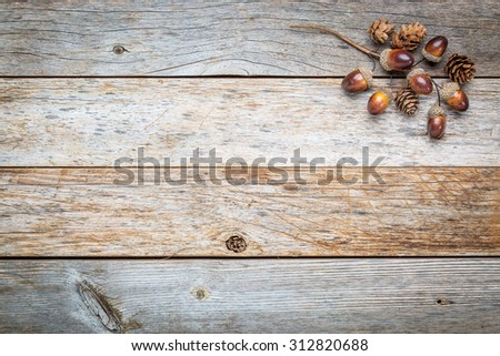 weathered barn wood background with acorns and cones fall decoration - stock photo