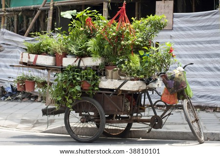 Weathered wheelbarrow full of potted plants parked on a city street